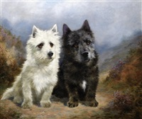 highland terriers by lilian cheviot