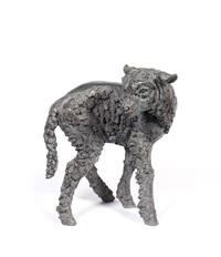 lamb by sally arnup