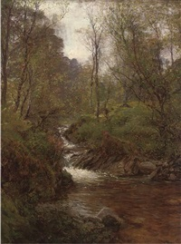 a wooded stream by alexander brownlie docharty