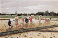 women working in a rice field by fabian de la rosa