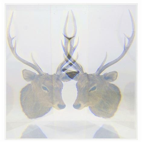 pixcell deer by kohei nawa