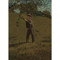 green apples by winslow homer