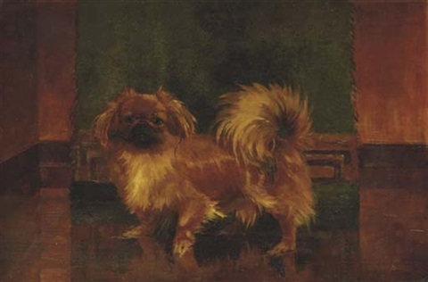 a standing pekingese by wm durrant