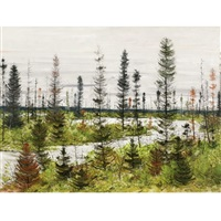 black spruce country by jacques godefroy de tonnancour