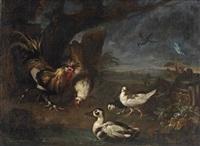 a cockerel with ducks in a landscape by franz werner von tamm