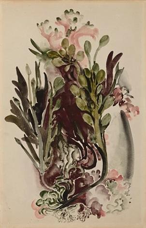 seaweed ii by georgia okeeffe
