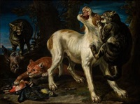 gatos atacando a un perro by david de coninck