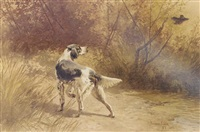 an english setter putting up woodcock by hermann gustave simon