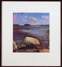boulder and island by robert andriulli