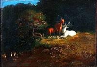 lysning i en skov med hjorte by johan thomas lundbye