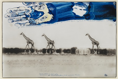 giraffes in mirage on the taru desert kenya by peter beard