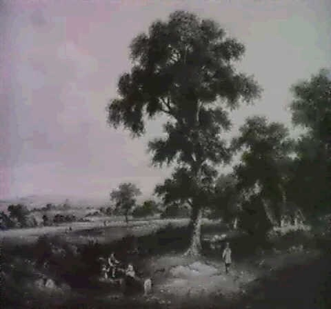 the old oak by john andrews