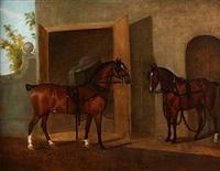 portrait d'actios et de spring devant leurs boxes by clifton tomson