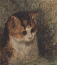 study of a kitten by arthur batt