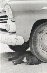 new mexico, etats-unis by elliott erwitt