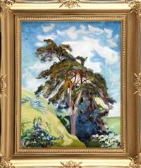 letni pejzaż z drzewem by stanislaw paciorek