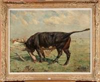 taureau noir au pré by alfred jacques verwee