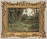 a cock and two hen pheasants in a wooded landscape by ben hold
