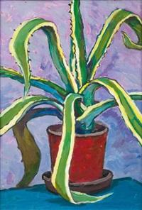 le cactus by ivan ivanovich godlevsky