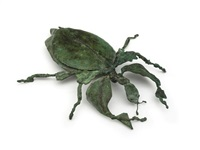 leaf beetle by stella shawzin