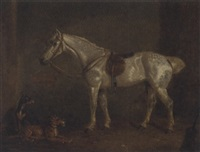 a saddled grey with terriers in a stable by h. s. cottrell