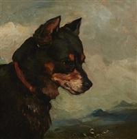 head of a terrier by john emms