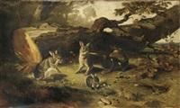 famille de lapins dans un sous bois by philippe rousseau