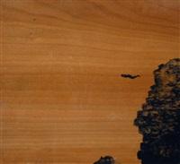 fly island by dror auslander