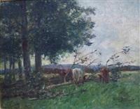 fallen trees by arthur spooner
