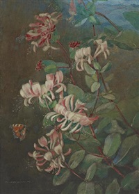 honeysuckle and butterfly by katharine cameron