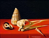 nature morte aux coquillages by renard