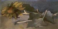 sonnenblume by max dungert