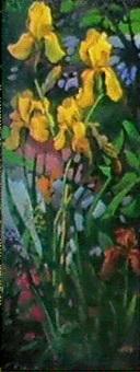 iris jaunes by boris kaploun