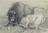 a stag challenging a bison by sir edwin henry landseer
