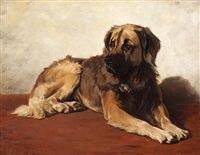 the faithful leonberger by conradyn cunaeus