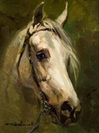 caballo blanco by juan gonzález alacreu