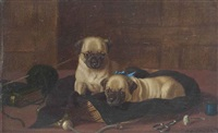 the seamstresses pugs by horatio henry couldery