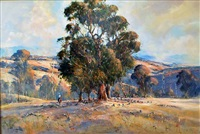 high country, dwellingup, wa by henry mclaughlin