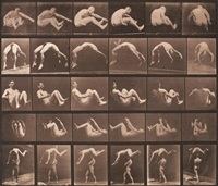animal locomotion, pl. 522 by eadweard muybridge