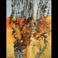 transition by kathleen gemberling adkinson