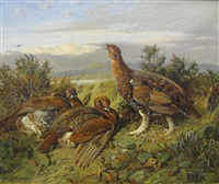 grouse on a moor a loch beyond by william woodhouse