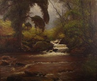 a wooded highland stream by alexander brownlie docharty