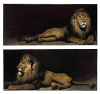 reclining lions (pair) by aime nicolas morot