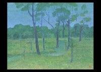 forest field by jun yamagishi