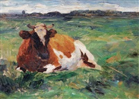 resting cow by thomas herbst