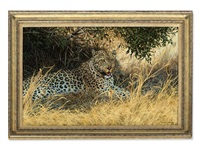 leopard by willem de beer