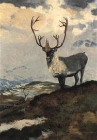 caribou by douglas allen
