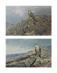 gyr falcon on a rocky crag (+ gyr falcon with a rainbow beyond; 2 works) by george edward lodge