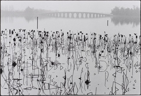 wilted lotus blossoms former summer palace kunming lake beijing china by rené burri