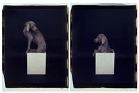 in the box (diptych) by william wegman